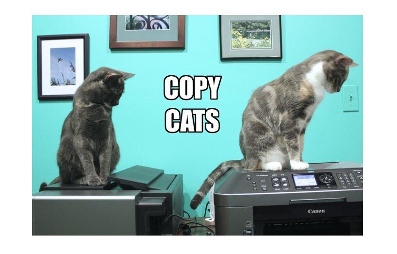 Ich liebe ja diese Copy-Cats: Weiter machen!