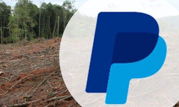 Paypal nur noch mit 46 Mitarbeitern in Berlin?