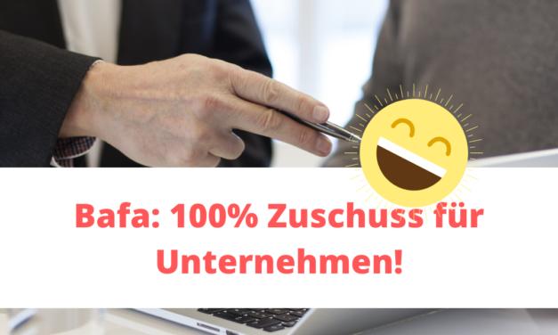 Bafa: 100% Zuschuss für Unternehmen! [Werbung]