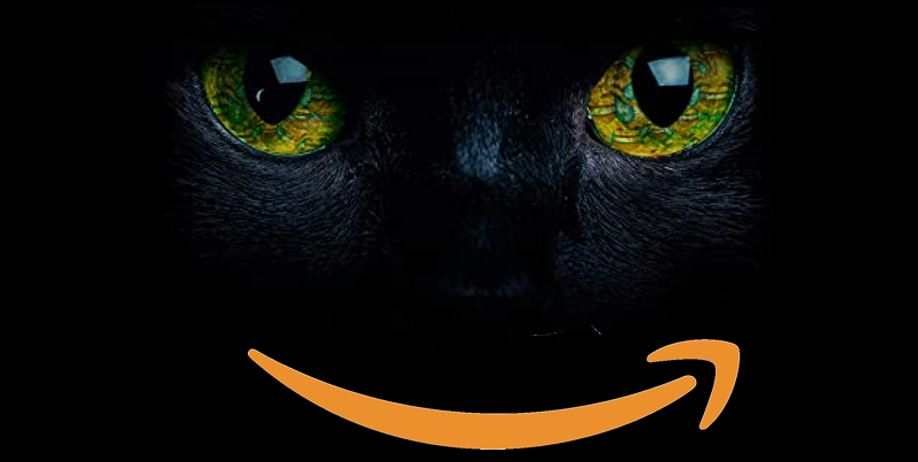 BVOH-Umfrage: 111 Fragen zu Amazon, die für euch wichtig sind